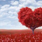 the tree of love 559 150x150 - Aşk Duası Var mıdır?