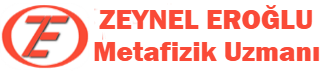 [Image: cropped-zeyneleroglu-logo.png]